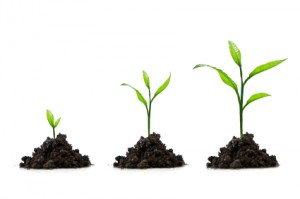 Lead Nurturing Best Practices and Stages