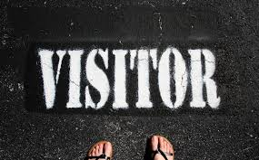 Are You Generating Helpful Visitor Profile Data?
