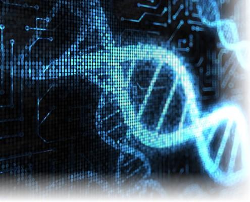 Build a Digital DNA